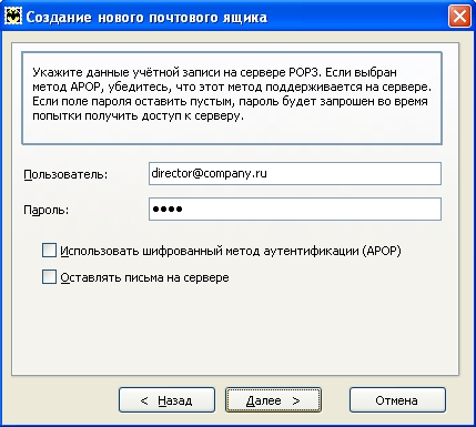 Укажите логин (например, director@company.ru) и пароль